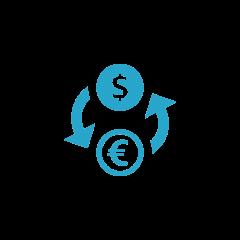 Rechnung in verschiedenen Währungen